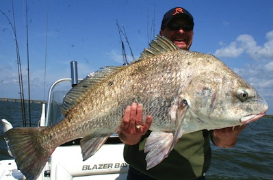 Fishing Trip Biloxi Ms Windy Weather Makes For Tough Fishing